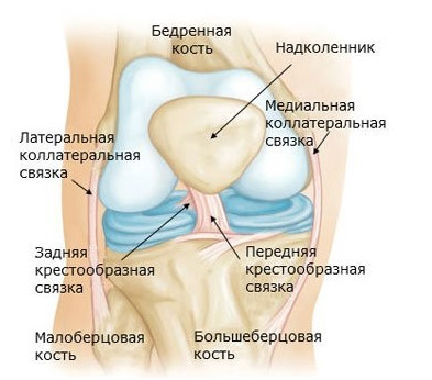 Повреждение связок коленного сустава нужна ли операция thumbnail